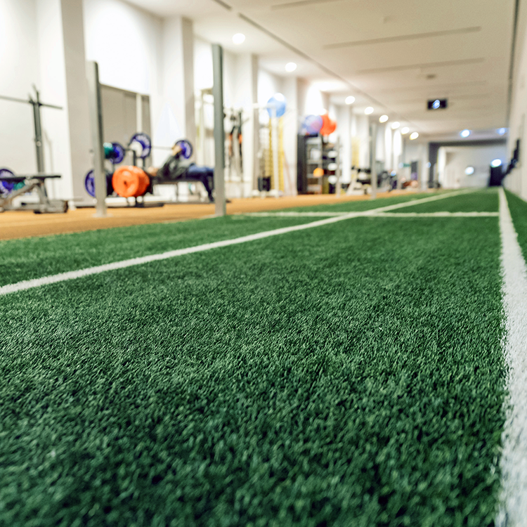 a wide angle picture of an indoor gym utilizing used artificial turf.